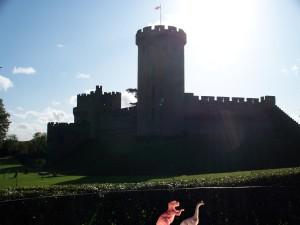 Warwick Castle Dinos
